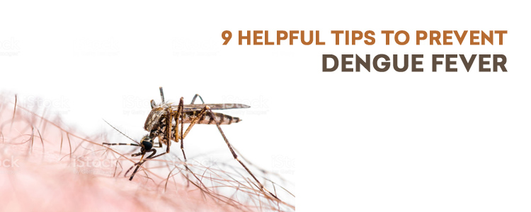 9 Helpful tips to prevent dengue fever